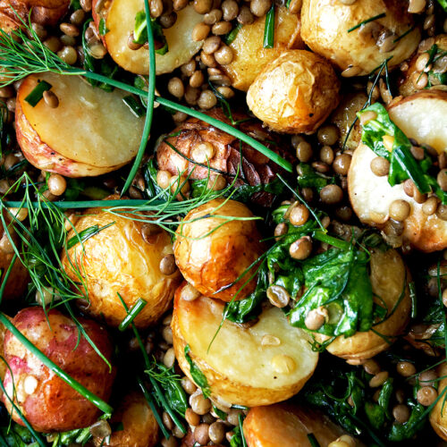 Roasted New Potato Salad with Lentils & Herb Dressing | occasionallyeggs.com
