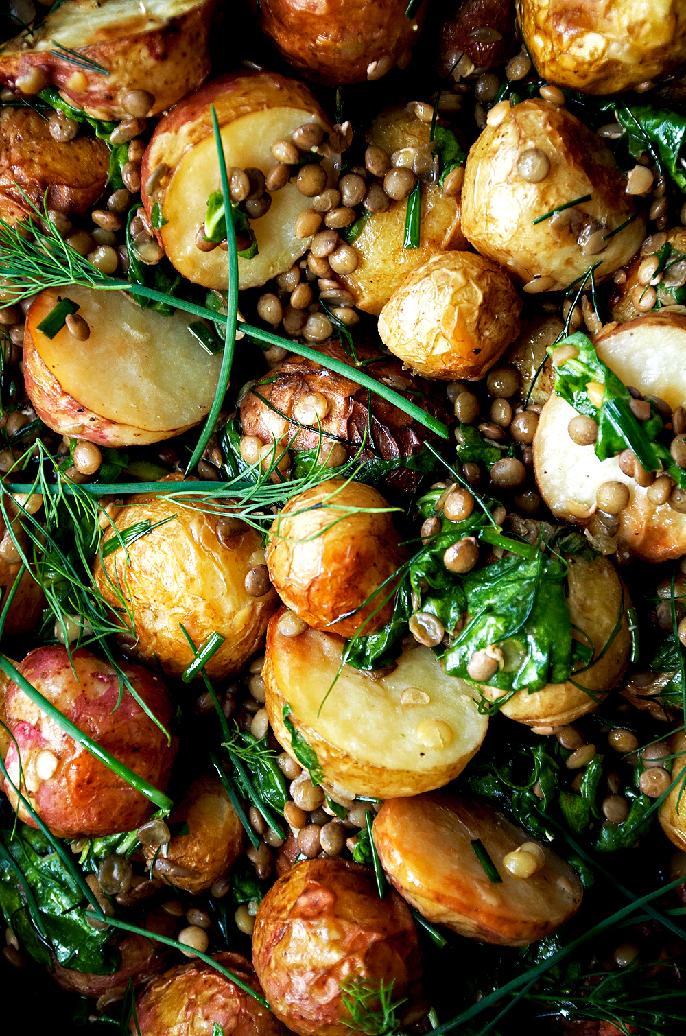 Roasted New Potato Salad with Lentils + Herb Dressing | occasionallyeggs.com