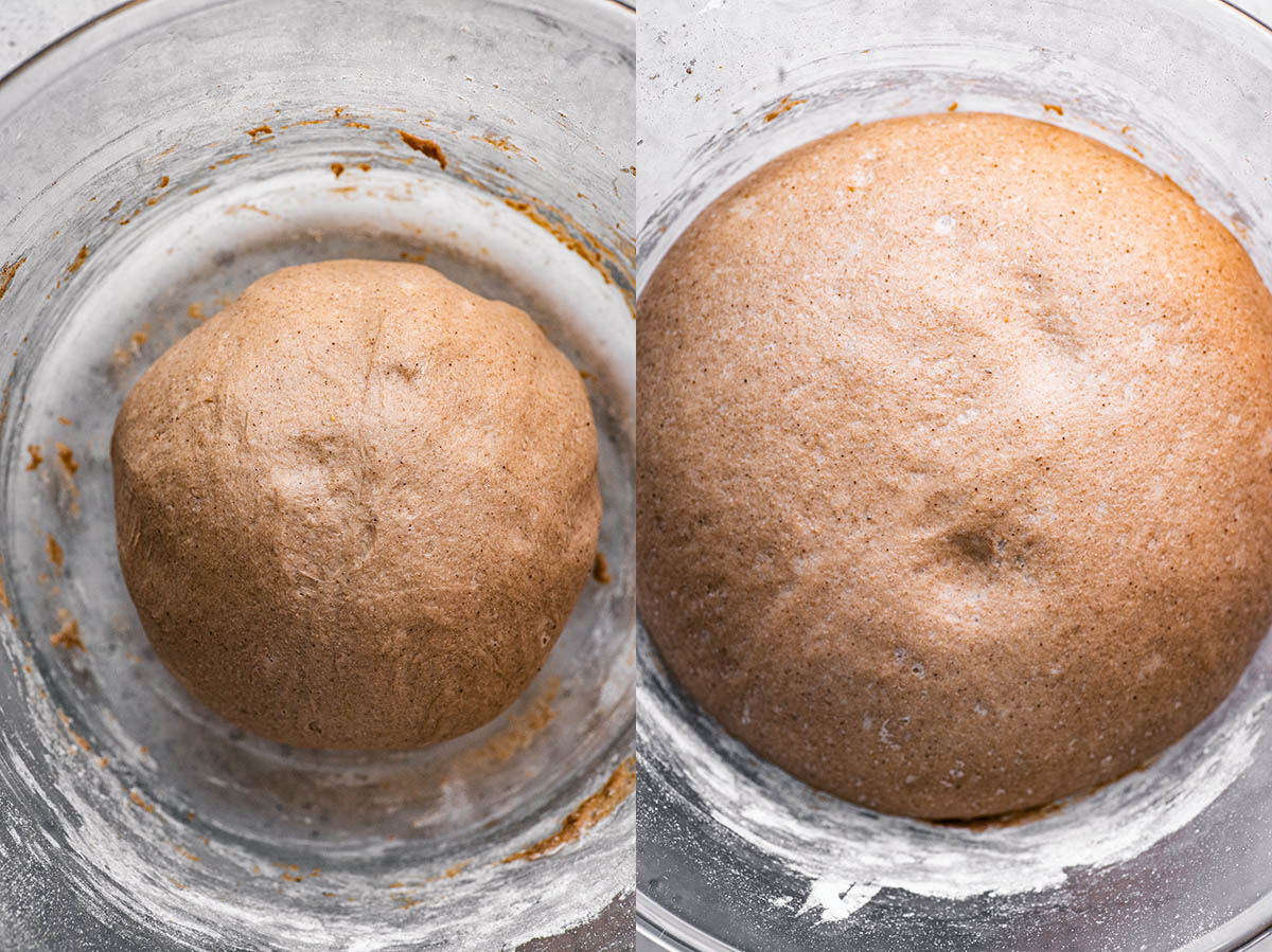 Cinnamon roll dough before and after first prove.