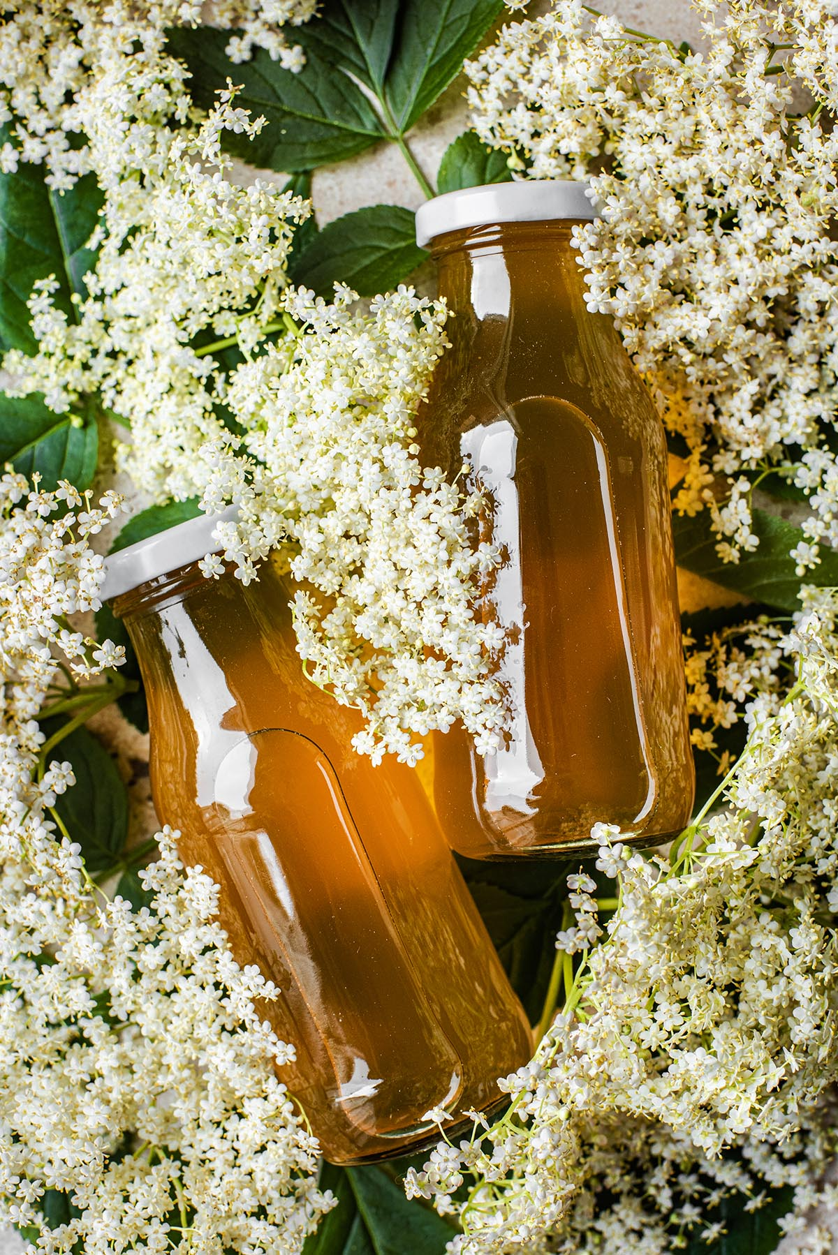Two small glass bottles of elderflower cordial lying in several elderflower heads.