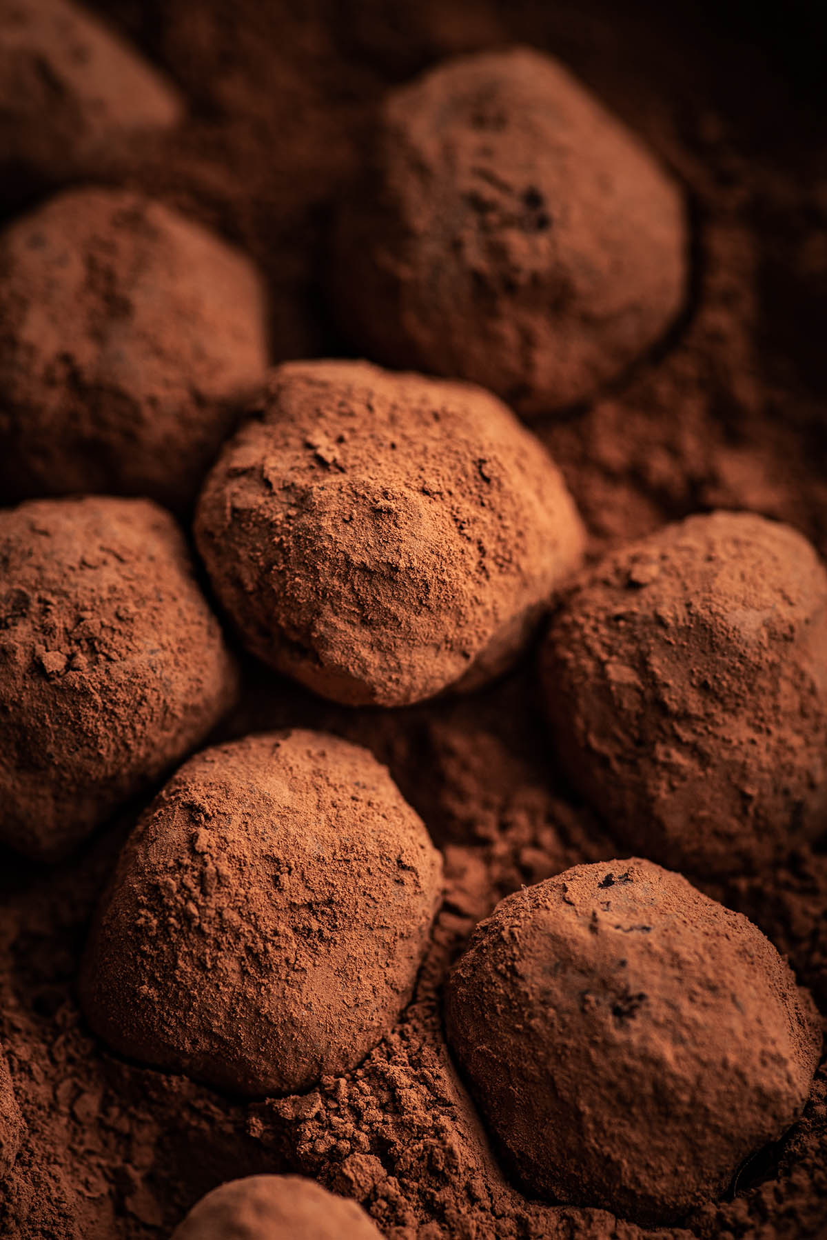 Close up of truffles in cocoa.