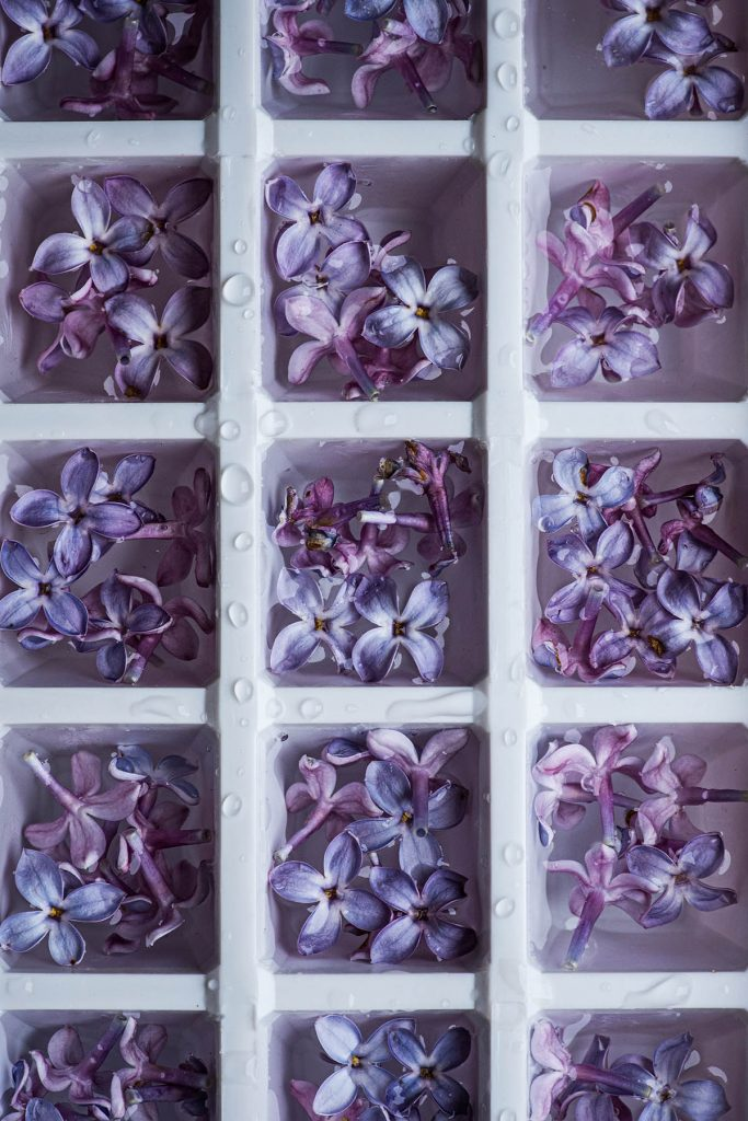 Close up of lilac ice cubes.